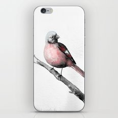 Fink (Karmingimpel) | Finch (Rosefinch) iPhone & iPod Skin