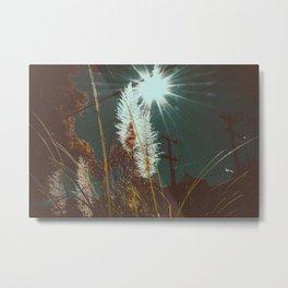 wonderland. Metal Print
