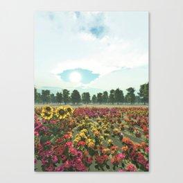 Heavens Eye Canvas Print