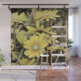 Yellow Daisy flower Sepia Country Rustic Decor Farmhouse Art A219 Wall Mural