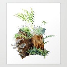 Mossy Stump Art Print