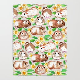 Guinea Pigs and Daisies in Watercolor Poster