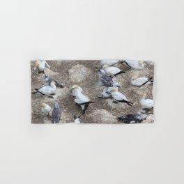 Gannet Colony Hand & Bath Towel