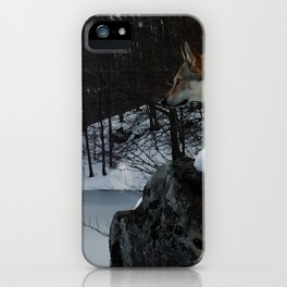 Artic time iPhone Case