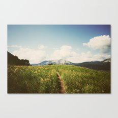 Summer Wander Canvas Print