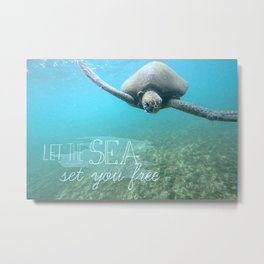 Free Turtle  Metal Print