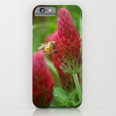 Crimson Clover iPhone 6s Slim Case
