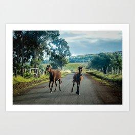 Free horses in Rapa Nui Art Print