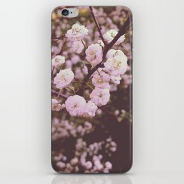 Soft Pink Blossoms iPhone Skin