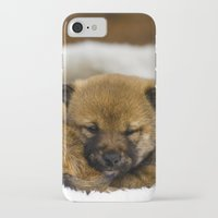 shiba inu iPhone & iPod Cases featuring Red Shiba Inu Puppy by Blue Lightning Creative