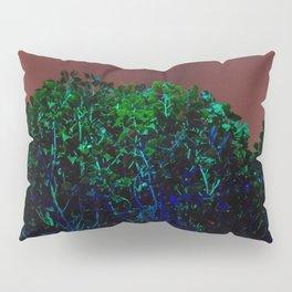 RGB 1 Pillow Sham