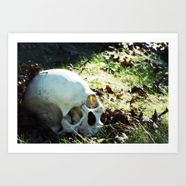 More Skulls Please Art Print