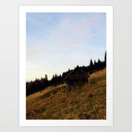 Cosy carpathian cabin Art Print