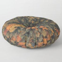 Autumn Passage Floor Pillow