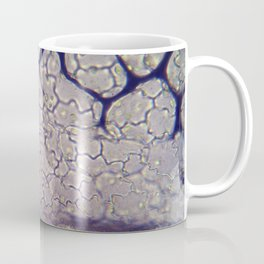 Duckweed Inspiration Coffee Mug