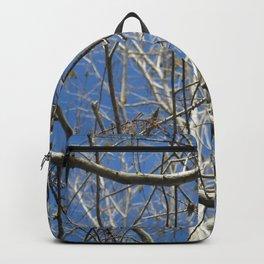 Crisp Cold Florida Morning Backpack