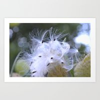 Seed Silk Art Print