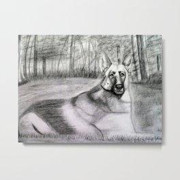 Pencil Drawing - German Shepherd in the woods Metal Print