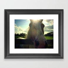 Sunny Horse Framed Art Print