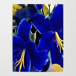 Blue Lilies Poster