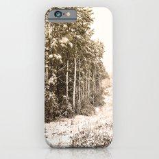 Winter Roadside iPhone 6s Slim Case