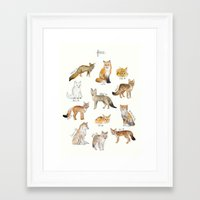 foxes Framed Art Prints featuring Foxes by Amy Hamilton