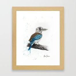 One Clever Kookaburra Framed Art Print