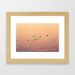 Pájaros Framed Art Print