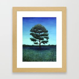 Nocturnal Southern Pine Framed Art Print