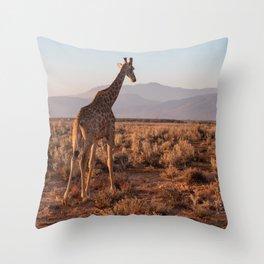 Giraffe admiring the savannah in South Africa Throw Pillow