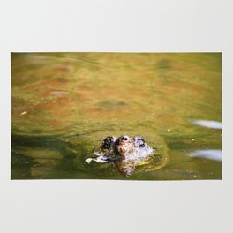 The King of the Turtles Rug