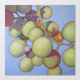 Grapes No.8 Canvas Print
