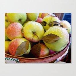 Rainy Apple basket Canvas Print