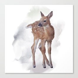 whitetail deer fawn watercolor painting Canvas Print