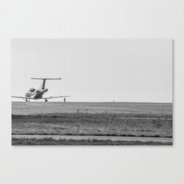 TL0029 Canvas Print