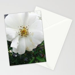 Nothing's perfect Stationery Cards