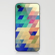 dyrzy iPhone & iPod Skin