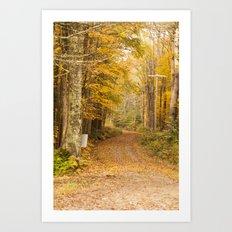 The Unpaved Path - Fall Colors Art Print