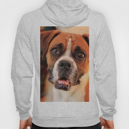 boxer's face weeping of friendly behavior Hoody