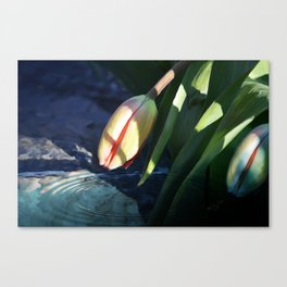 """""""Waiting For Spring"""" - Tulip Painting Canvas Print"""