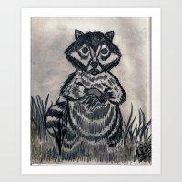 racoon Art Prints featuring RACOON by NEIL STUART COFFEY