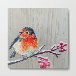 Winter Robin Metal Print