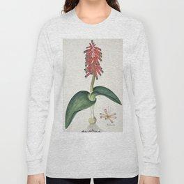 Robert Jacob Gordon - Lachenalia bulbifera - 1777/1786 Long Sleeve T-shirt