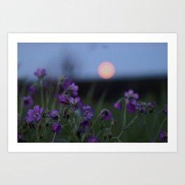 Moon flowers Art Print