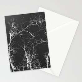 Branches and Sky Stationery Cards