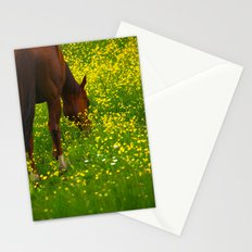 Enjoying The Wildflowers Stationery Cards