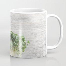 Fresh herbs for kitchen Coffee Mug