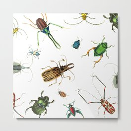 Bug Life - Beetles - Bugs - Insects - Colorful - Insect Pattern Metal Print