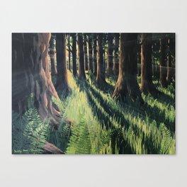 Fern Forest Canvas Print