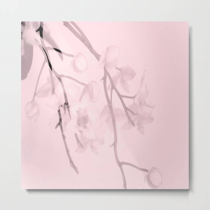 Flower branches on a pastel pink background - spring mood Metal Print
